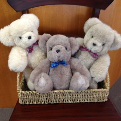 Selection of our hand made Tasmanian made teddies